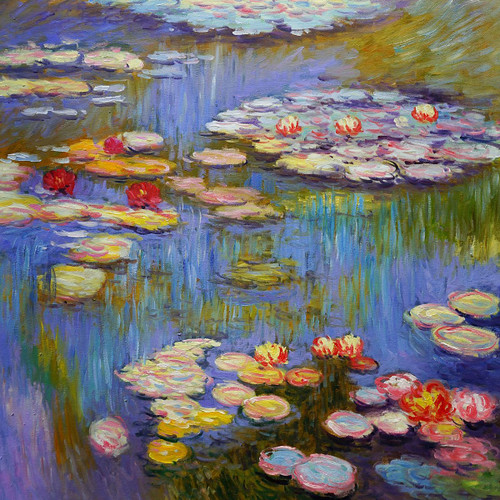 Flower,Floral,Pond,Lotus