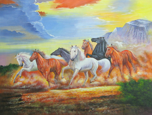 horses, horse, running horses, running horse, 6 horses, many horses, group of horses, white horse, brown horse