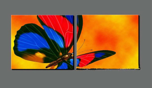butterfly, butterfly paintings, multipiece butterfly, blue butterfly, orange