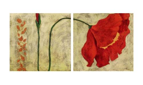 flower, flowers, blossom, red blossom, red flower,multipiece flower