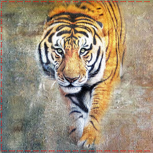 Tiger02 - 32in X 32in,Tiger02_3232,Animal,Wild Nature,Tiger,National,Yellow, Brown,Rs.4390,Latest Collection;Equestrian Art and Wildlife;By Orientation and Size/Square/Medium (25in to 32in);Full Collection,Museum Quality - 100% Handpainted