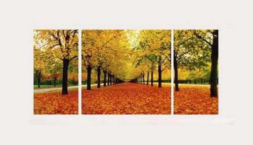 tree, trees, forest, orange leaves, multi piece forest, green forest