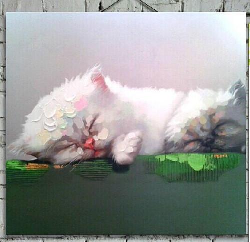 cat, kitten, little cat, little kitten, sleeping , sleeping cat, sleeping kitten, white cat, white kitten