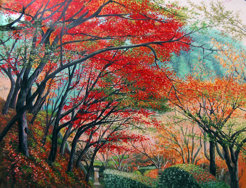 Landscape,Red,Pink Tree,Tree Blossom,Nature,Scenery