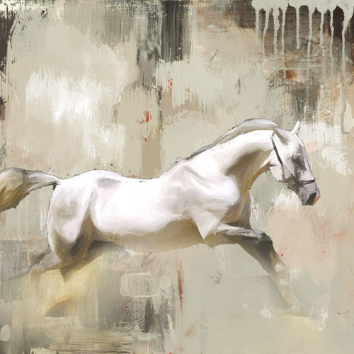 The Distance - 32in X 32in,56Anm16_3232,Community Artists Group,white horse,Canvas,Oil Colors,Horse,Horses,Race,Museum Quality - 100% Handpainted
