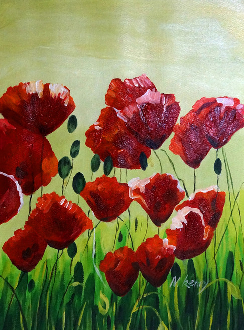 52Flower16,Red FlowersmRed Tulip,Red Poppy,Beauty Of Red,