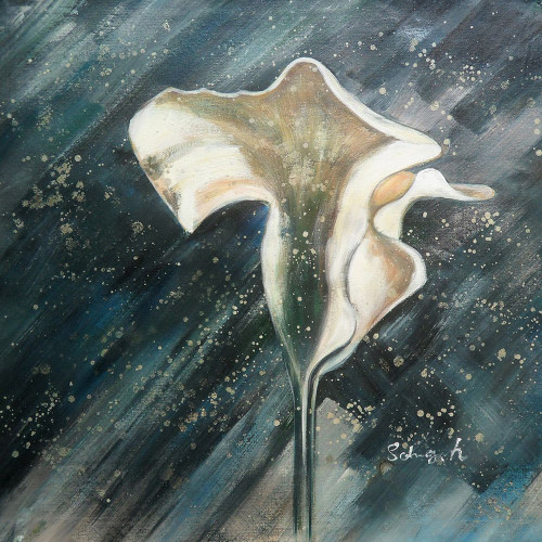 blossom, flowers, white flower, white flower in rain, white flower in thunder, rain, flower in rain, heavy rain