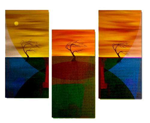 Multicolor Tree,Three Tree,Colorful Tree