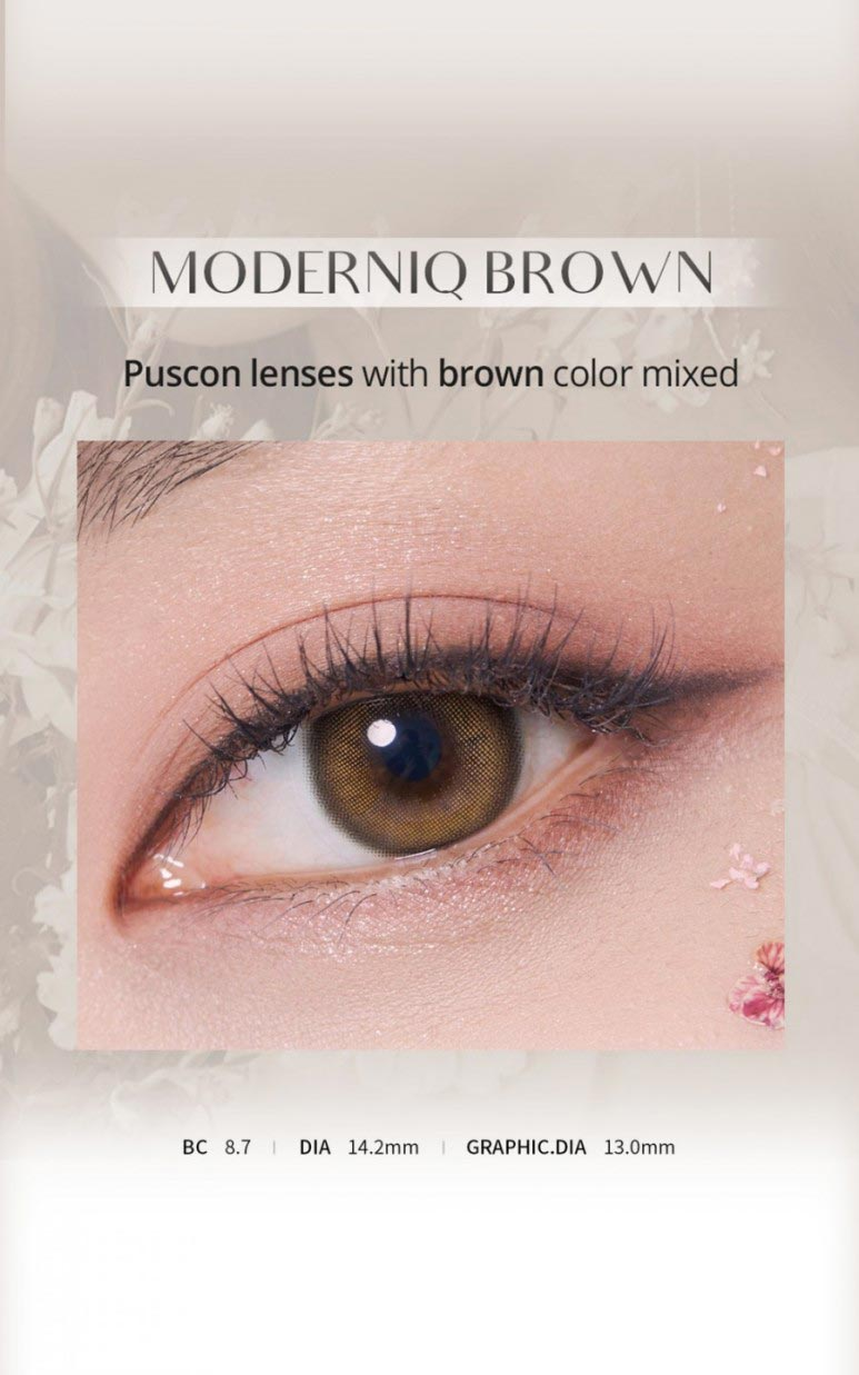 moderniqbrown-main600-2.jpg
