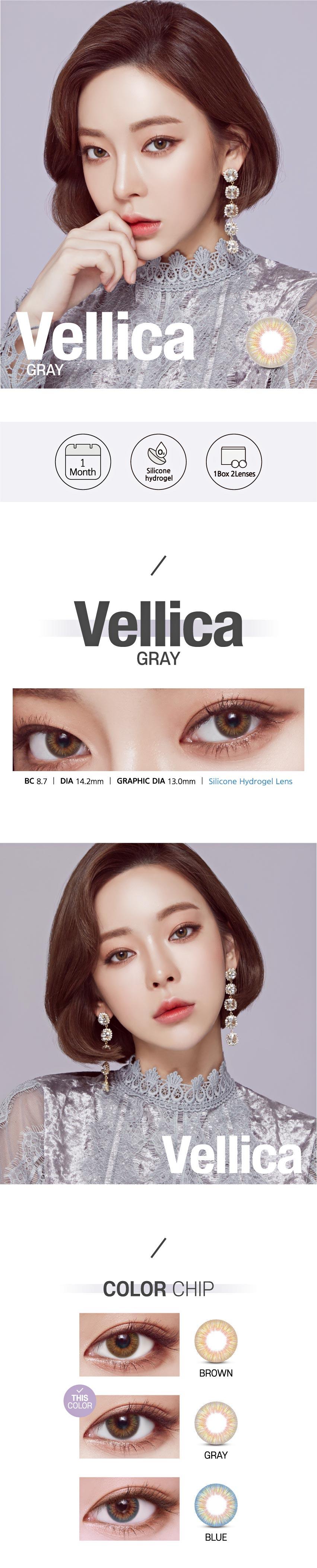 vellica-gray1.jpg