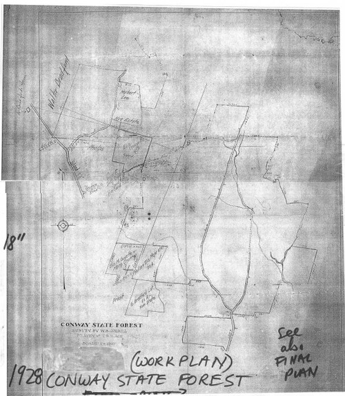 Conway 1928 - Old Town Map - Conway Forest Work Plan