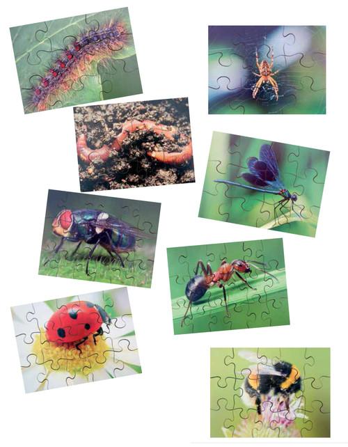 Minibeast Puzzle Set 2