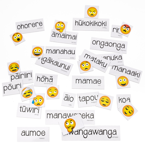 Maori Feelings Magnetic Set