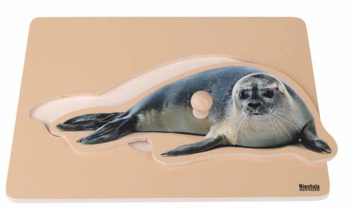 Seal Peg Puzzle