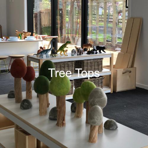 Tree Tops Preschool Pukekohe