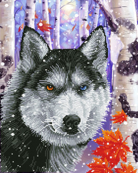 Forest Wolf Diamond Painting Kit