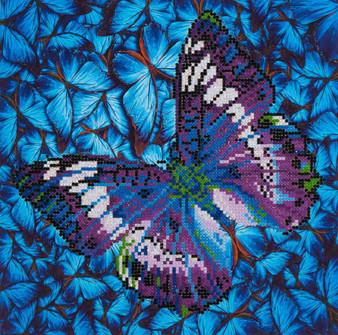 Flutter By Mauve Diamond Painting Kit