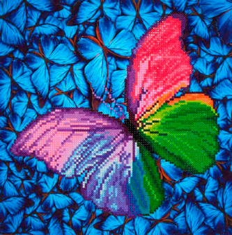 Flutter By Pink Diamond Painting Kit