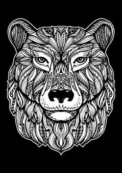 Bear Velvet Art Poster
