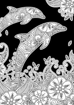 Dolphins Velvet Art Poster