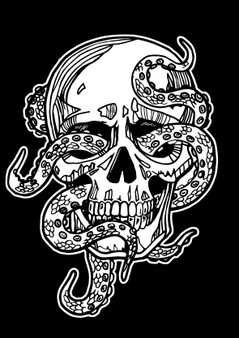 Skull Velvet Art Poster