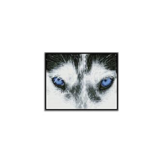 Mystic Husky Pre-Framed Diamond Dotz® Square Diamond Painting Kit