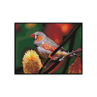 Gouldian Finch Pre-Framed Diamond Dotz® Square Diamond Painting Kit