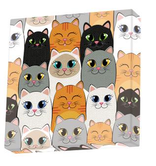 Cat Clan Dotz Box