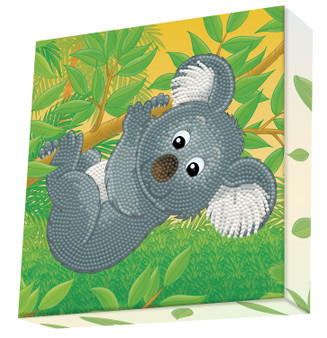 Koala Climb Dotz Box