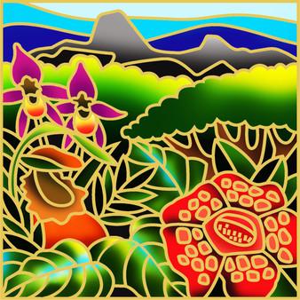 Proboscis Batik Painting Kit