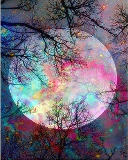 Mystic Moon Paint By Numbers Pre-Framed Canvas