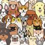 Dogs & DOTZ Dotz Box