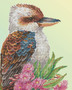 Kookaburra & Gum Blossom Diamond Dotz Diamond Painting Kit