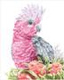 Pink Galah & Banksias Diamond Dotz Diamond Painting Kit