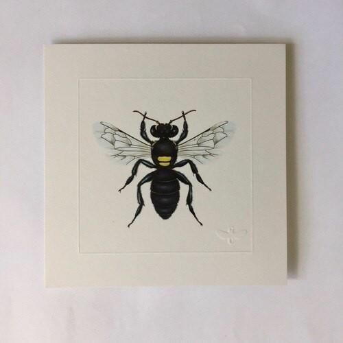 Miniature print. Common Masked Bee