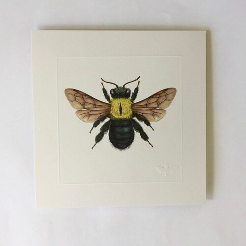 Miniature print. Great Carpenter Bee
