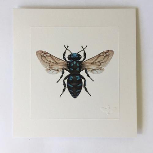Neon cuckoo bee by Gina Cranson