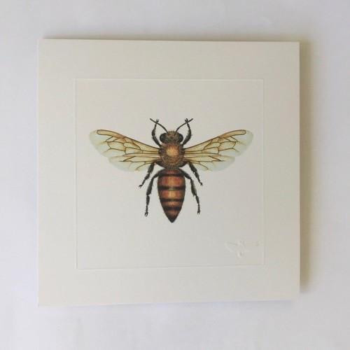 Miniature print Honey Bee