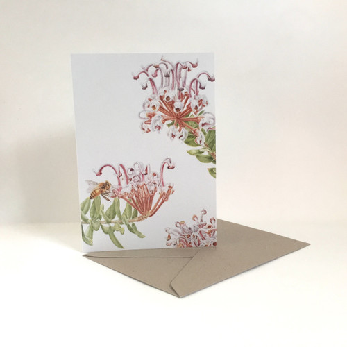 Card: Grevillia Buxifolia, Grey Spider Flower with Honey Bee
