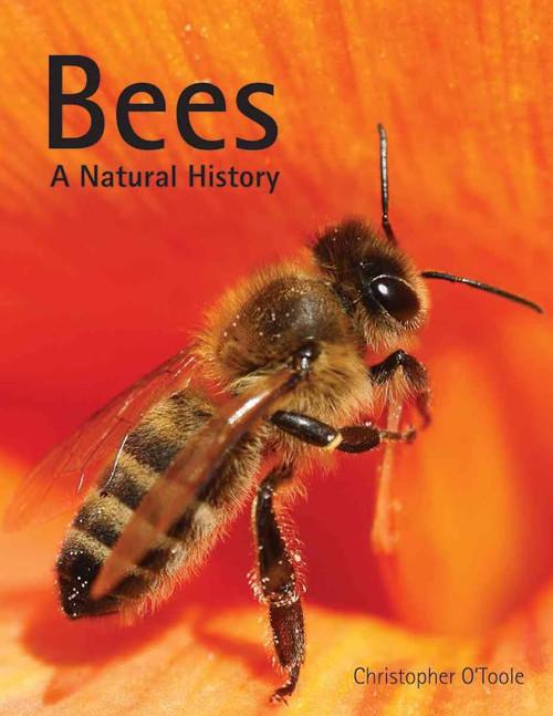Bees - a natural history