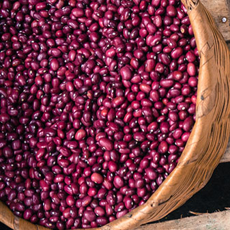 Cooking with Beans - preparation and uses of dried beans & pulses