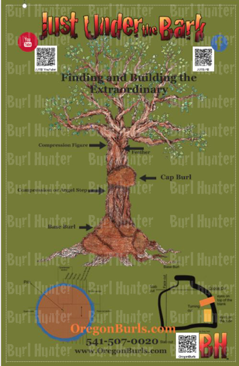 Anatomy of a Burl Poster POS001