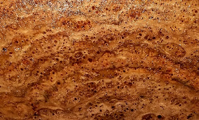burl-of-the-month.jpg