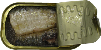 Wild caught sardines in water