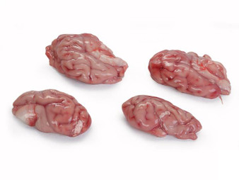 PORK BRAINS- 1LB