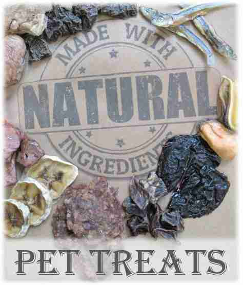 product-category-links-home-page-pet-treats-20-percent.jpg
