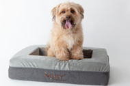 Introducing: Charlie & Co Ergonomic Memory Foam Pet Bedding!