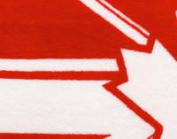Close-up view of Canoe Canada Fleece Throw fabric texture
