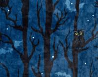 Close up of Halloween Fleece Throw in Night Owl.