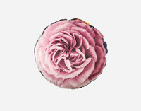 Monika Round Cushion features a single bloom in blush pink and magenta tones.